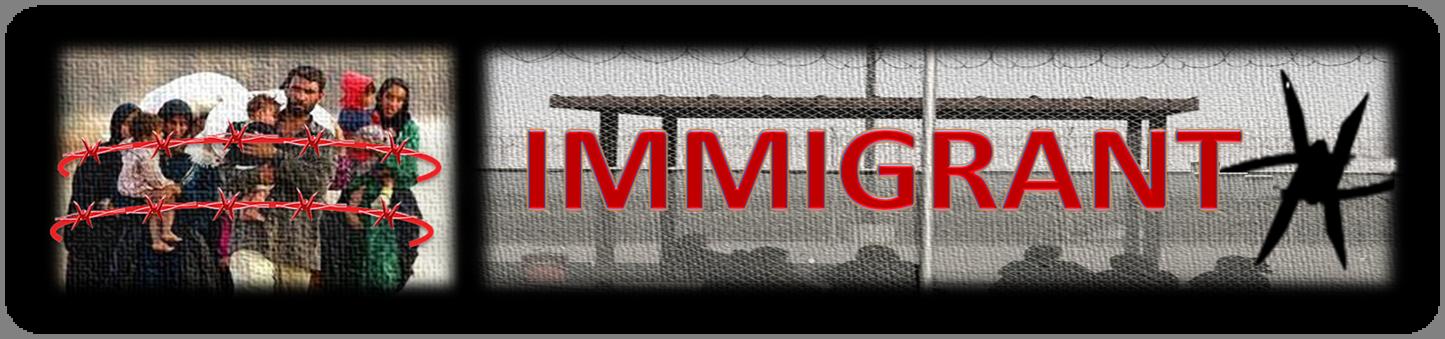 Immigrant X